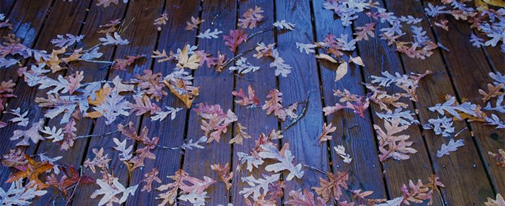 leaves and debris on decking