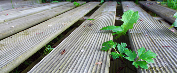 why use weed control fabric for your decking feature image