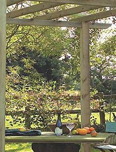 why a pergola is the perfect addition to your decking area feature image