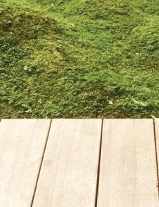 decking for sloped garden