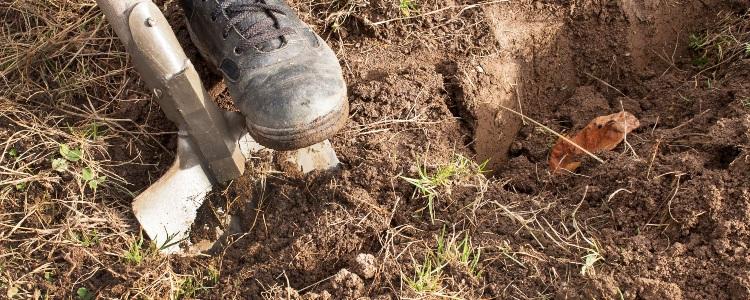 Digging-Hole-Savoy