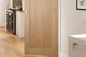 1 Panel Doors